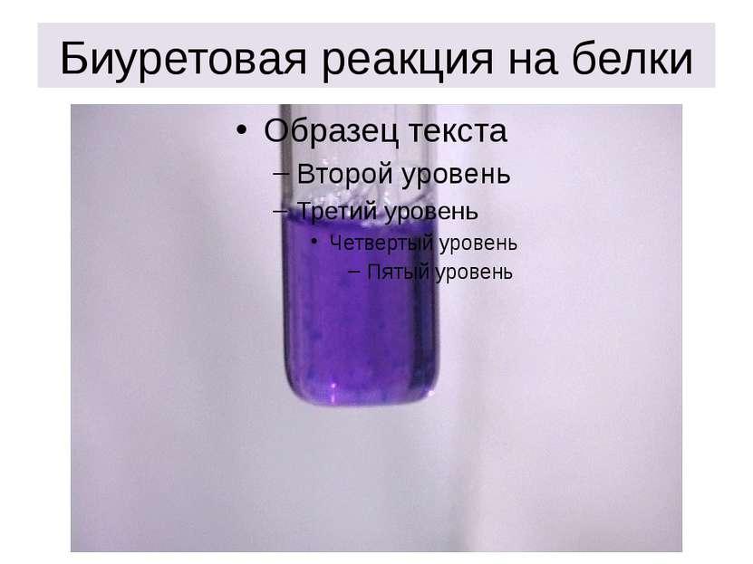 Биуретовая реакция на белки