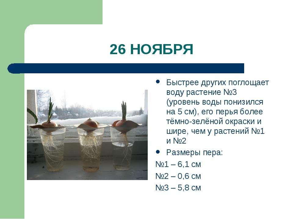 26 НОЯБРЯ Быстрее других поглощает воду растение №3 (уровень воды понизился н...