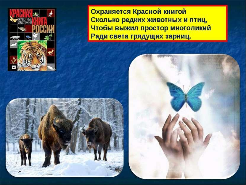 Охраняется Красной книгой Сколько редких животных и птиц, Чтобы выжил простор...