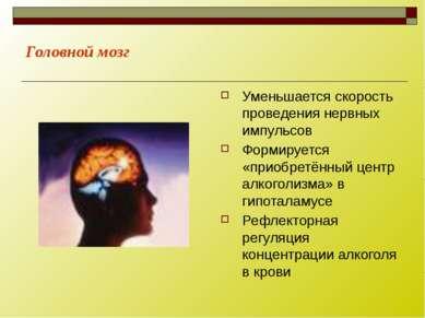 Головной мозг Уменьшается скорость проведения нервных импульсов Формируется «...