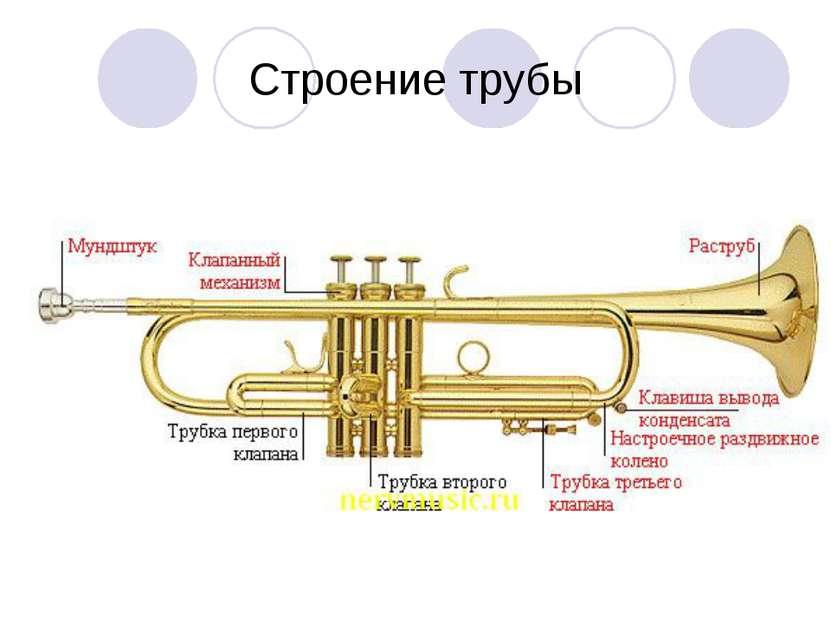 Строение трубы