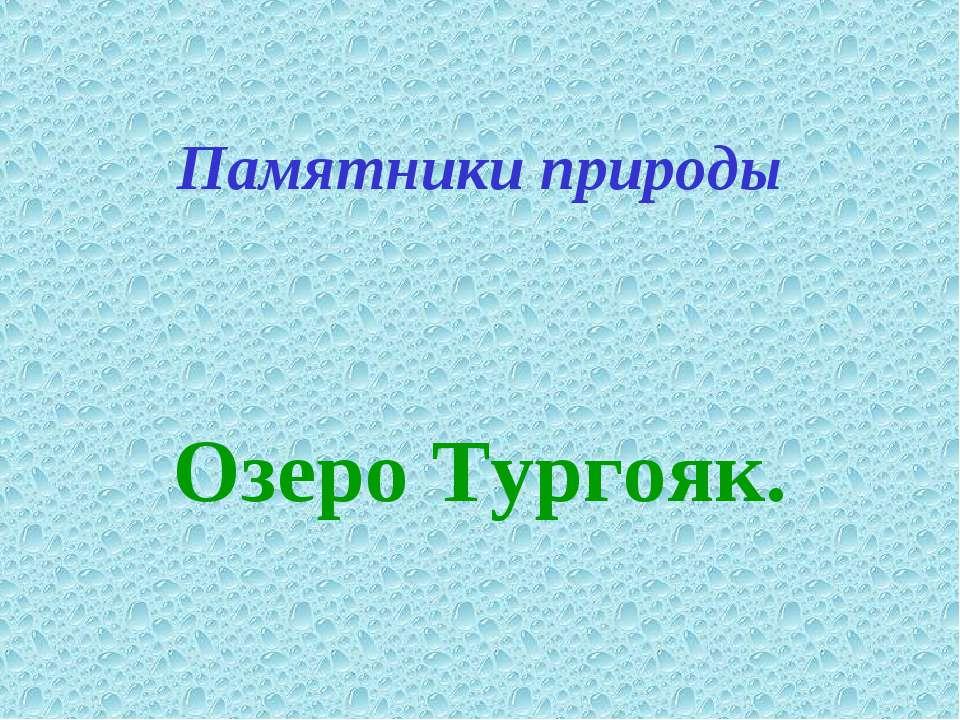 Памятники природы Озеро Тургояк.
