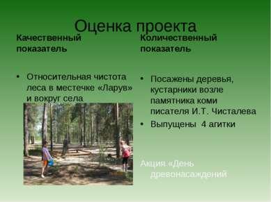 Оценка проекта Качественный показатель Относительная чистота леса в местечке ...