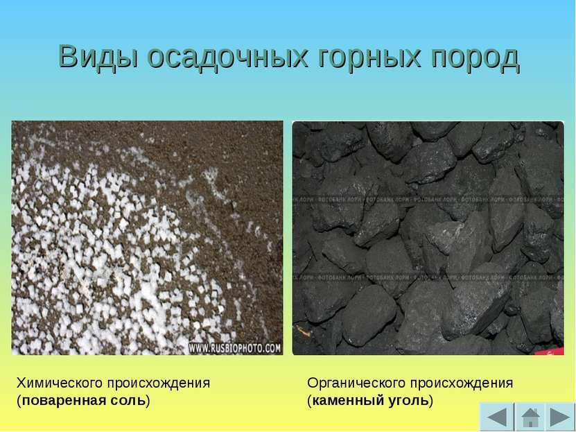 Виды осадочных горных пород Химического происхождения (поваренная соль) Орган...
