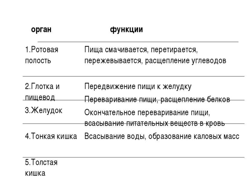 орган функции 1.Ротовая полость 2.Глотка и пищевод 3.Желудок 4.Тонкая кишка 5...
