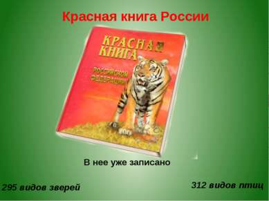 Красная книга России В нее уже записано 295 видов зверей 312 видов птиц