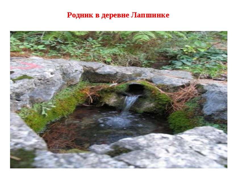Родник в деревне Лапшинке