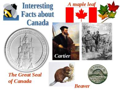 Beaver A maple leaf Cartier The Great Seal of Canada
