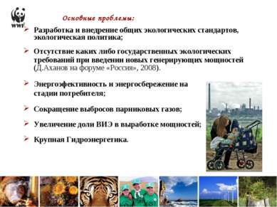 Основные проблемы: Разработка и внедрение общих экологических стандартов, эко...