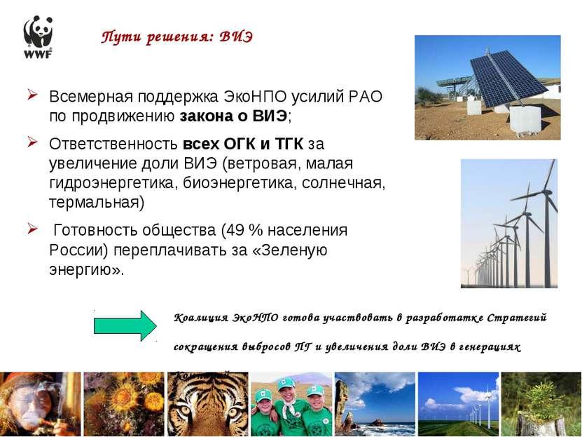 Пути решения: ВИЭ Всемерная поддержка ЭкоНПО усилий РАО по продвижению закона...