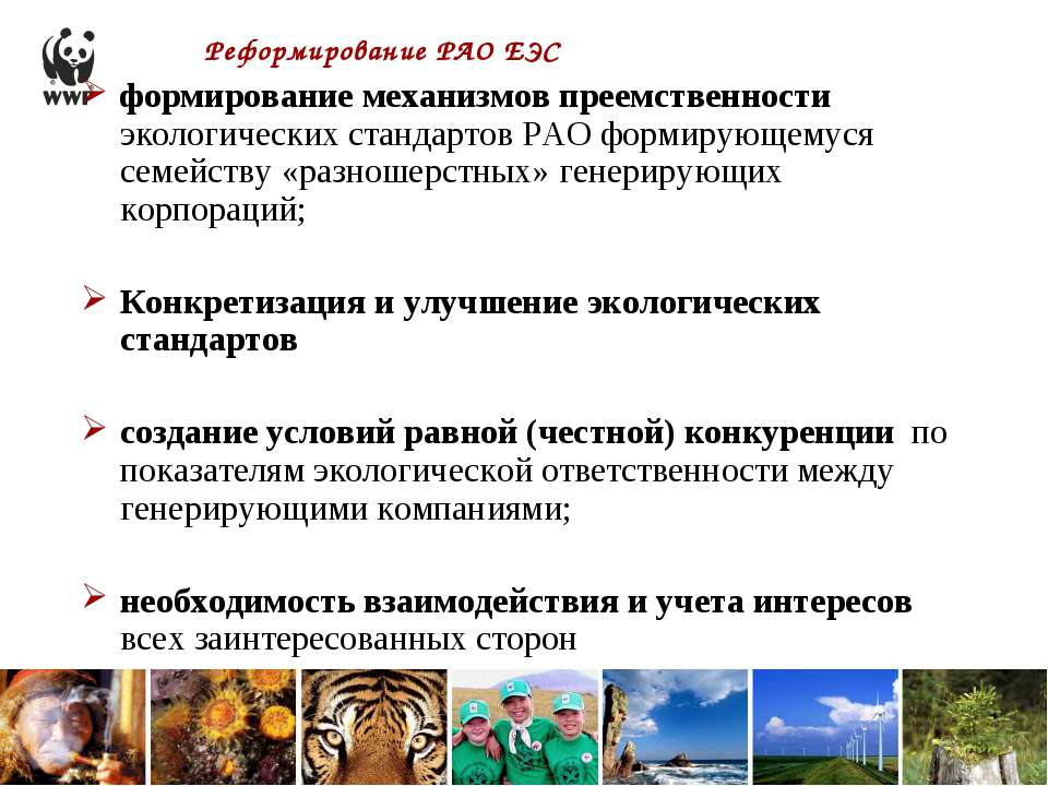 Реформирование РАО ЕЭС формирование механизмов преемственности экологических ...