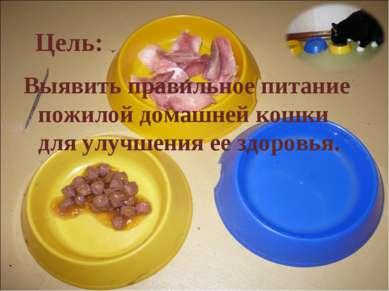 Цель: Выявить правильное питание пожилой домашней кошки для улучшения ее здор...