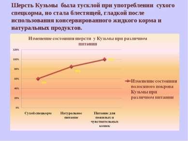Шерсть Кузьмы была тусклой при употреблении сухого спецкорма, но стала блестя...