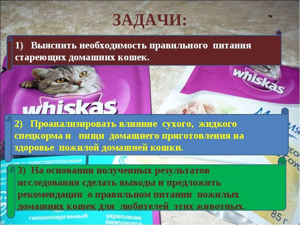 ЗАДАЧИ: 1) Выяснить необходимость правильного питания стареющих домашних коше...
