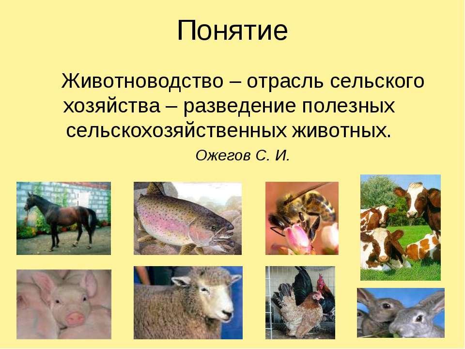 Животноводство – отрасль сельского хозяйства – разведение полезных сельскохоз...