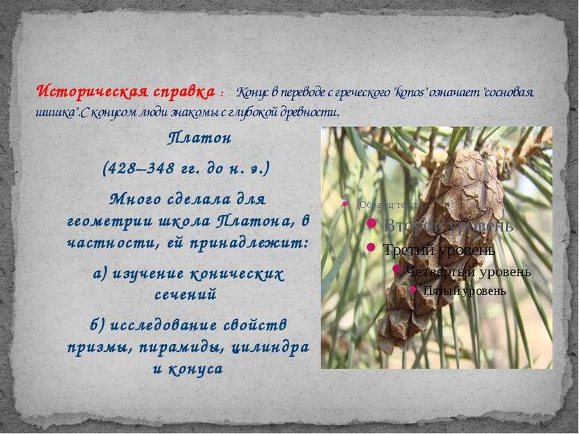 """Историческая справка : Конус в переводе с греческого """"konos"""" означает """"соснов..."""