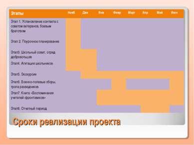 Сроки реализации проекта Этапы Нояб Дек Янв Февр Март Апр Май Июн Этап 1. Уст...
