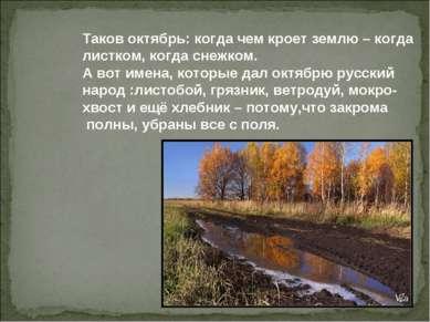 Таков октябрь: когда чем кроет землю – когда листком, когда снежком. А вот им...
