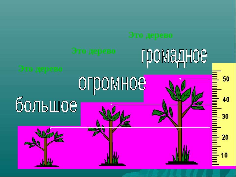 Это дерево Это дерево Это дерево