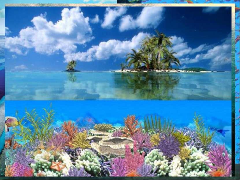 Здесь находится самое большое в мире скопление коралловых рифов, где насчитыв...