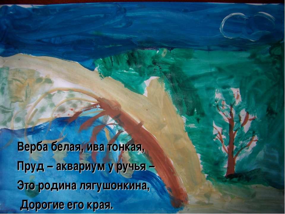 Верба белая, ива тонкая, Пруд – аквариум у ручья – Это родина лягушонкина, До...
