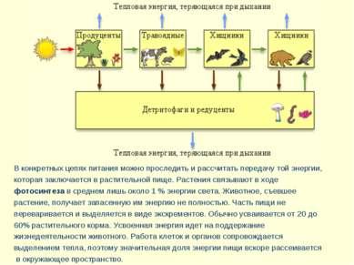В конкретных цепях питания можно проследить и рассчитать передачу той энергии...