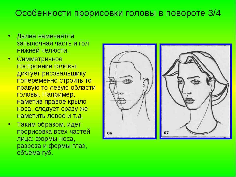 Особенности прорисовки головы в повороте 3/4 Далее намечается затылочная част...