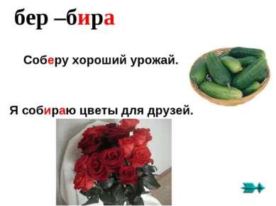 бер –бира Соберу хороший урожай. Я собираю цветы для друзей.