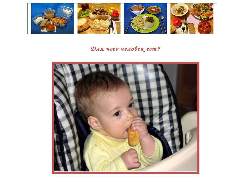 Для чего человек ест?