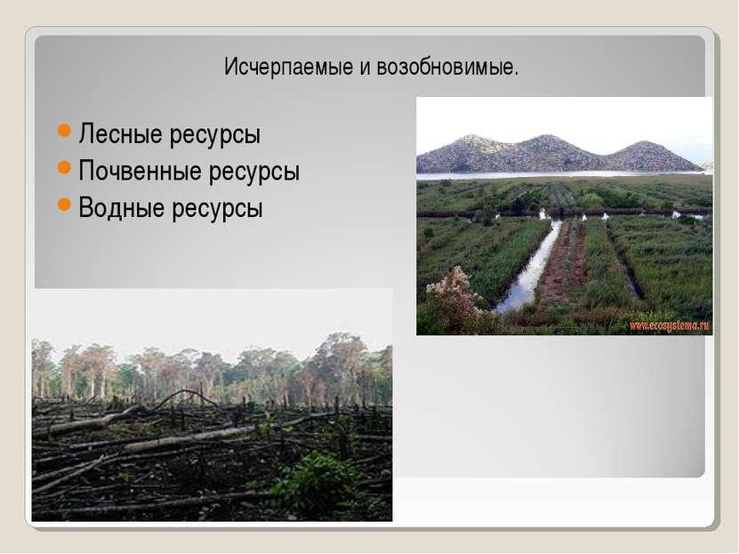 Исчерпаемые и возобновимые. Лесные ресурсы Почвенные ресурсы Водные ресурсы