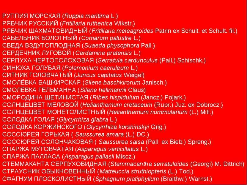 РУППИЯ МОРСКАЯ (Ruppia maritima L.) РЯБЧИК РУССКИЙ (Fritillaria ruthenica Wik...