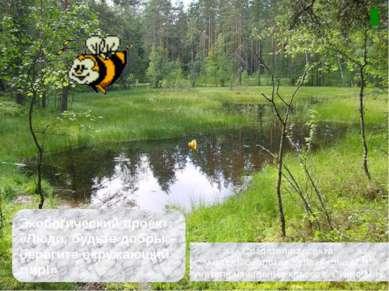 Экологический проект: «Люди, будьте добры – берегите окружающий мир!» Создате...