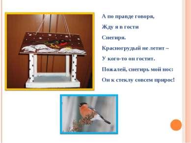 А по правде говоря, Жду я в гости Снегиря. Красногрудый не летит – У кого-то ...