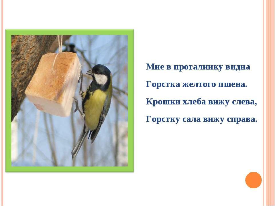 Мне в проталинку видна Горстка желтого пшена. Крошки хлеба вижу слева, Горстк...