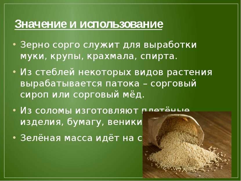 Значение и использование Зерно сорго служит для выработки муки, крупы, крахма...