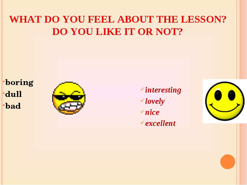 WHAT DO YOU FEEL ABOUT THE LESSON? DO YOU LIKE IT OR NOT? boring dull bad int...