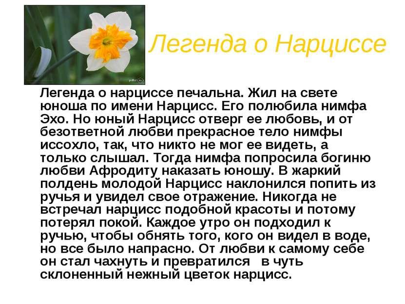 Легенда о Нарциссе Легенда о нарциссе печальна. Жил на свете юноша по имени Н...