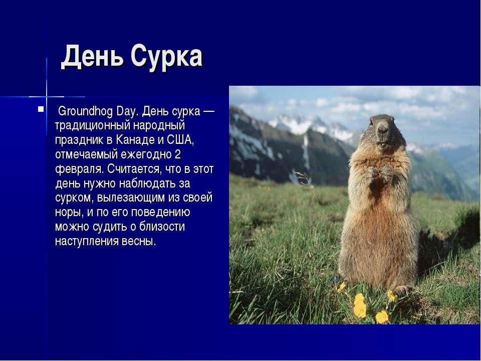 День Сурка Groundhog Day. День сурка — традиционный народный праздник в Канад...