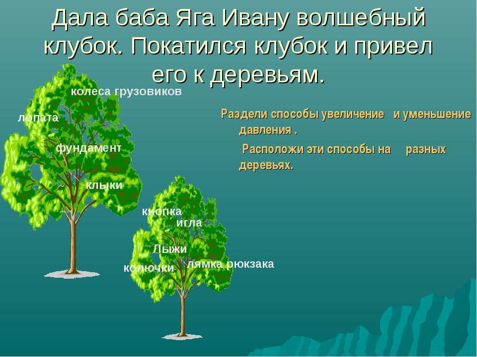 Дала баба Яга Ивану волшебный клубок. Покатился клубок и привел его к деревья...