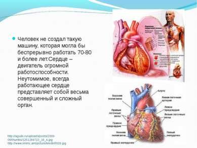 http://agudo.ru/uploads/posts/2009-08/thumbs/1251284723_16_4.jpg http://www.n...