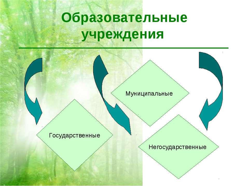 Образовательные учреждения Государственные Муниципальные Негосударственные