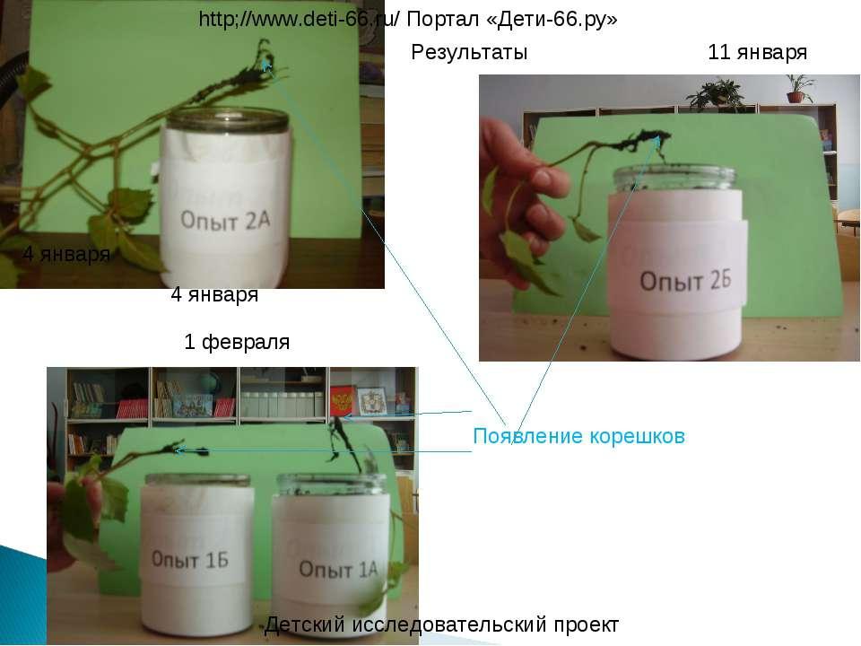 Детский исследовательский проект http;//www.deti-66.ru/ Портал «Дети-66.ру» 4...