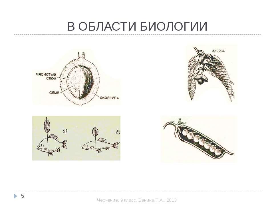 В ОБЛАСТИ БИОЛОГИИ * Черчение, 9 класс. Ванина Т.А., 2013