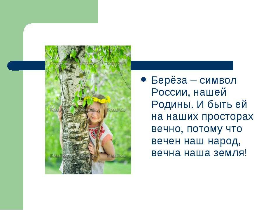 Берёза – символ России, нашей Родины. И быть ей на наших просторах вечно, пот...