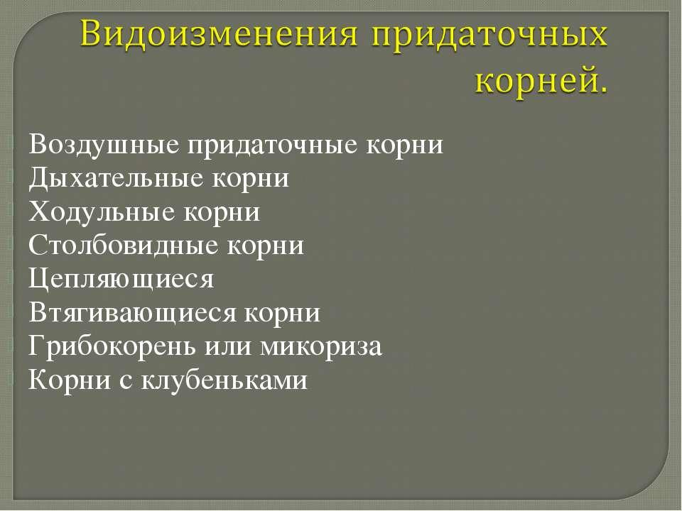 Воздушные придаточные корни Дыхательные корни Ходульные корни Столбовидные ко...