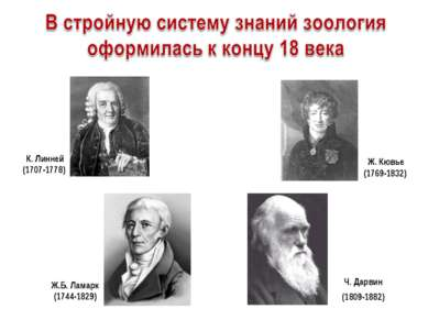 Ж.Б. Ламарк (1744-1829) Ч. Дарвин (1809-1882) К. Линней (1707-1778) Ж. Кювье ...