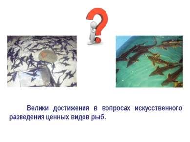 Велики достижения в вопросах искусственного разведения ценных видов рыб.