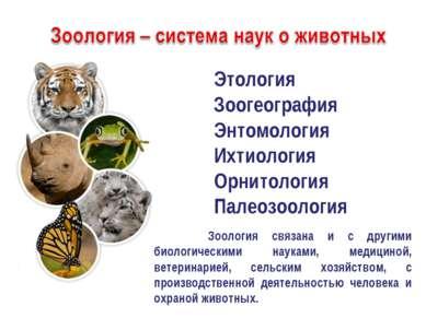 Этология Зоогеография Энтомология Ихтиология Орнитология Палеозоология Зоолог...