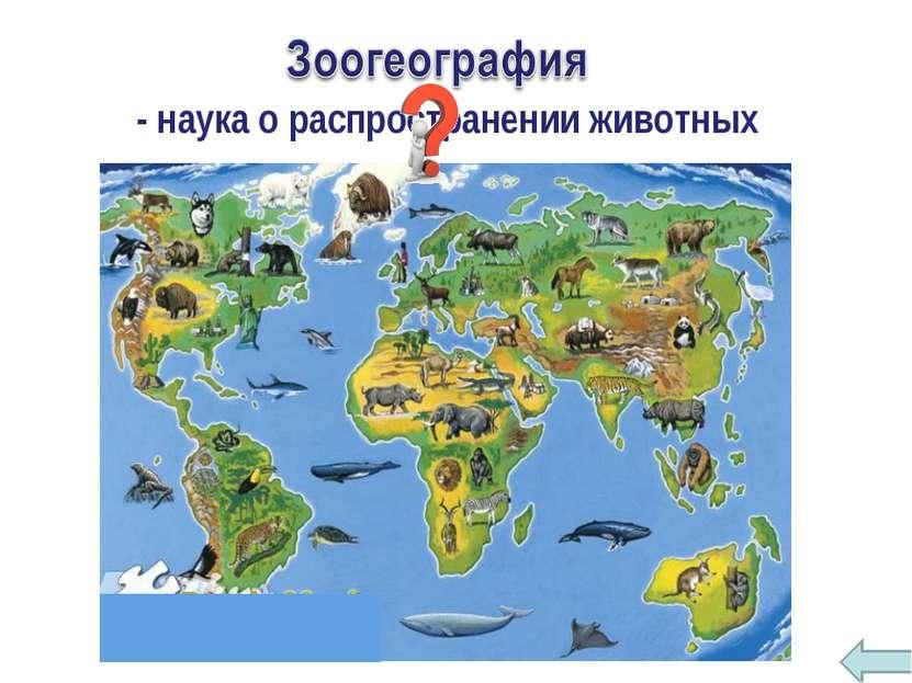 - наука о распространении животных
