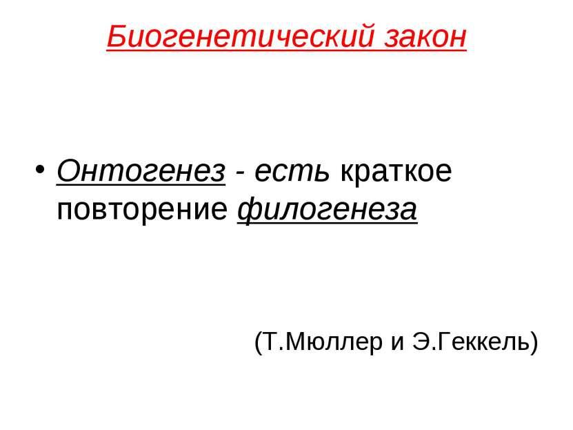 Биогенетический закон Онтогенез - есть краткое повторение филогенеза (Т.Мюлле...